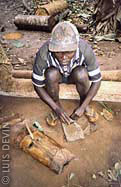 Preparation of the poison for the crossbow used by the Baka Pygmies
