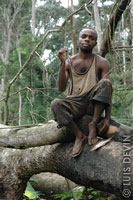 Pygmy man sitting on a fallen tree in the rainforest of Cameroon