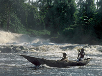Moving on a pirogue (Bakola-Bagyeli Pygmies, Cameroon)