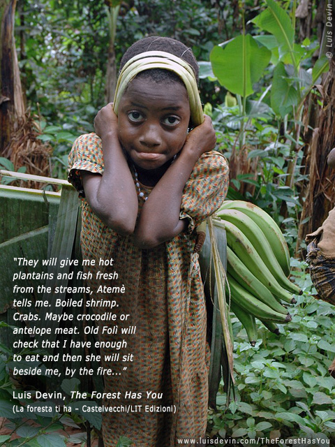 African Rainforest Pygmy Peoples