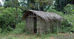 Bagyeli Pygmies house