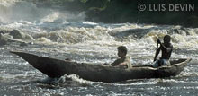 Pirogue in a Cameroonian river