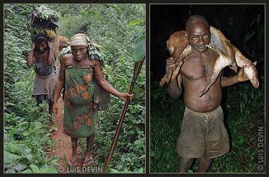 African Pygmies in the rain forest, photogallery with soundscapes